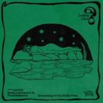 Mary Lattimore & Paul Sukeena - Dreaming of the Kelly Pool