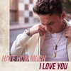 Icon Hate How Much I Love You - Single