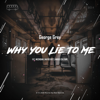 George Grey - Why You Lie to Me (feat. Nikko Culture) [Nikko Culture Remix] artwork