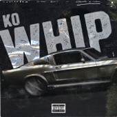 Whip artwork