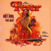 Fever Mp3 Download