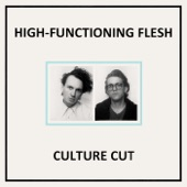 High-Functioning Flesh - Provoke the Wound
