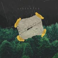 Liberated-NIve