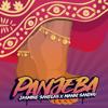 Panjeba - Jasmine Sandlas & Manni Sandhu mp3