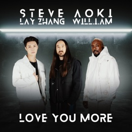 Steve Aoki – Love You More (feat. LAY & will.i.am) – Single [iTunes Plus M4A]