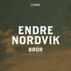 Endre Nordvik - Bror (fra De Neste) artwork