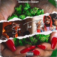 She the Plug (feat. DaBaby) - Single Mp3 Download
