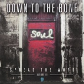 Down to the Bone - Soul Brother No.1