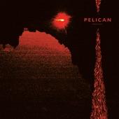 Pelican - Full Moon, Black Water
