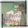 Ceyhun Zeynalov - Dəniz artwork