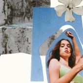 Alicia Clara - Flowers Were Better