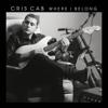 Cris Cab - Liar Liar artwork