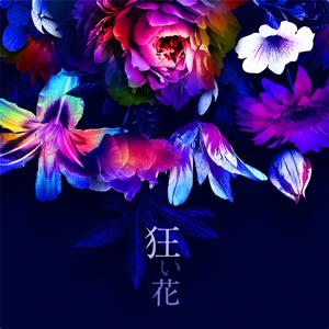 SIRO - 狂い花