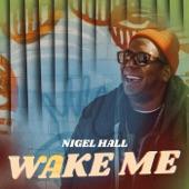 Wake Me - Single