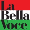 La Bella Voce - 20 Italian Hits, Various Artists