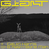 Giant-Calvin Harris, Rag'n'Bone Man