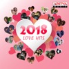 2018 Love Hits