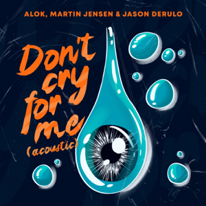 Alok, Martin Jensen & Jason Derulo - Don't Cry For Me (Acoustic)