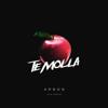 Arnon - Te Molla (2019 Version) artwork
