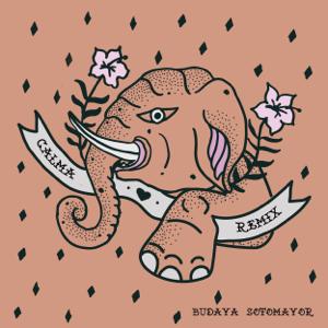 BUDAYA - Calma feat. Sotomayor [Sotomayor Remix]
