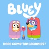 Here Come the Grannies! by Bluey iTunes Track 2