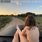 Bob Schneider - I Love This Life