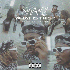 Kwamz - What Is This?
