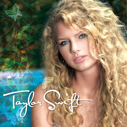 Art for Tim McGraw by Taylor Swift