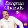 Evergreen Ghazals Vol 7
