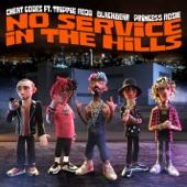 Cheat Codes;Blackbear;Trippie Redd;PRINCE$$ ROSIE - No Service In The Hills (feat. Trippie Redd, Blackbear, PRINCE$$ ROSIE)