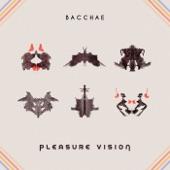 Pleasure Vision