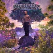 Zulu Man With Some Power - Nasty C