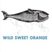Wild Sweet Orange - Land of No Return