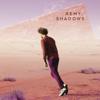 Remy Van Kesteren - Shadows kunstwerk