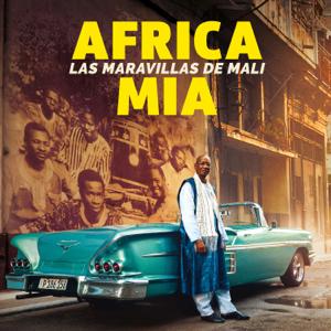 Maravillas de Mali - África Mía