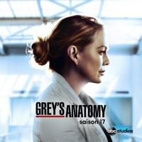 Télécharger Grey's Anatomy, Saison 17 (VOST) Episode 17