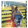 P!nk & Willow Sage Hart - Cover Me In Sunshine illustration