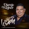 Django Wagner - Het Is Weer Weekend (m.m.v. Koninklijk Zigeunerorkest Roma Mirando) kunstwerk