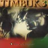 Timbuk 3 - National Holiday