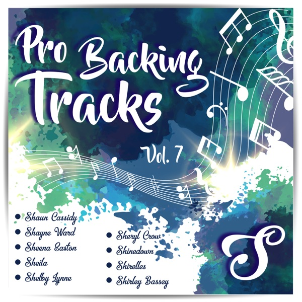 Pro Backing Tracks S, Vol.7