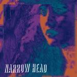 Narrow Head - Ashtray