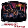 Icon MTV Unplugged In New York (25th Anniversary)