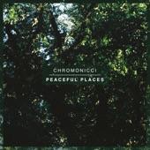 Chromonicci - Freedom.