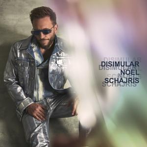 Noel Schajris - Disimular (Lado A)