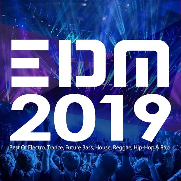 Various Artists - EDM 2019: Best of Electro, Trance, Future Bass, House, Reggae, Hip-Hop & Rap album wiki, reviews