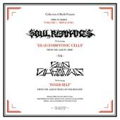 Soul Remnants - Dead Embryonic Cells