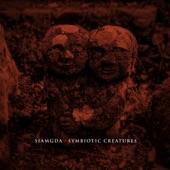 Siamgda - Blured Vision