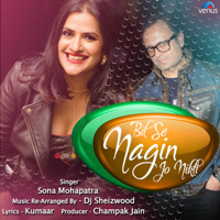 Bil Se Nagin Jo Nikli - Single