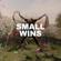 Dekker Small Wins - Dekker