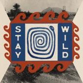 The Bones of J.R. Jones - Stay Wild